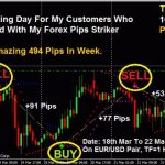 Most Accurate forex Non repaint Arrows Indicator for MT4 free